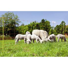 Siatka elektryczna dla owiec 108 cm długość 50m