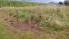 Napinacz do plecionki i drutu w ogrodzeniu elektrycznym-pastuch