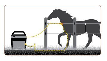 Zestaw Na Konie Pastuchy Elektryczne Zestawy Zestaw Na Konie